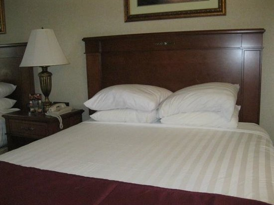 Drury Inn & Suites Greenville:                   one of two beds