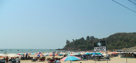 Baga Beach:                   Bustling with activity