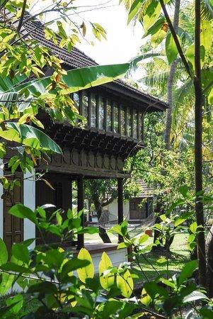 Coconut Lagoon:                   Villa                 