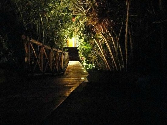Casa Hamaca Guesthouse: entrance at night