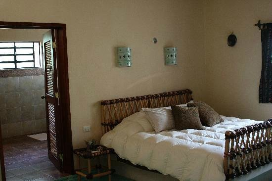 Casa Hamaca Guesthouse: the Jungle Suite (La Selva)