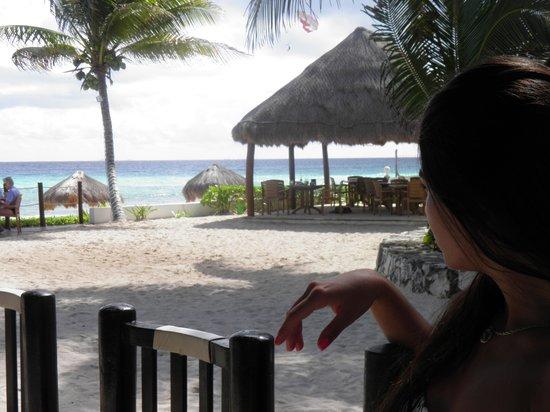 Petit Lafitte:                   Vista desde el restaurante de la playa