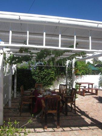 7 Church Street Guest House:                   Terrace