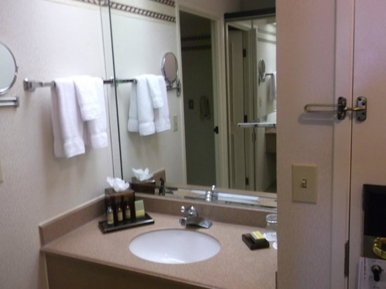 Miami Marriott Dadeland:                   bathroom