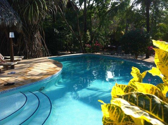Hotel Cantarana:                   Cantarana pool