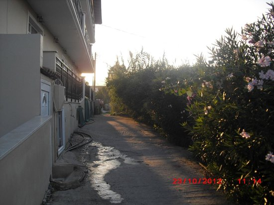 Zante Plaza Hotel & Apartments:                   the hotel side alley leading to the main bar street