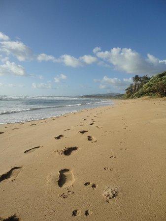Kauai Beach Resort:                   Walking along the beach
