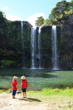 Whangarei Falls Holiday Park & BBH Backpackers:                   tourists at whanganei falls (short walk from campsite)