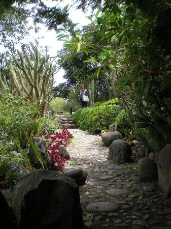 Pumapungo Museum and Arqueological Park - MCYP:                   Botanical Garden