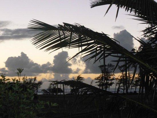 Plantation Hale Suites:                   Sunrise from Plantation Hale