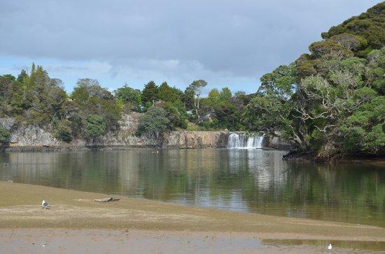 Haruru Falls Resort:                   View of Haruru Falls from Campsite
