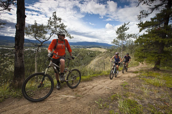 Территория Юкон, Канада:                   Yukon is one of North America's best mountain biking destinations