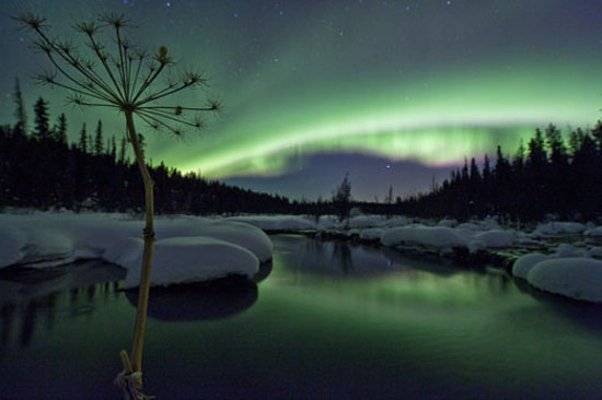 Yukon Territory, Canada:                   Late fall and winter visitors to Yukon are often treated to the mystical sight