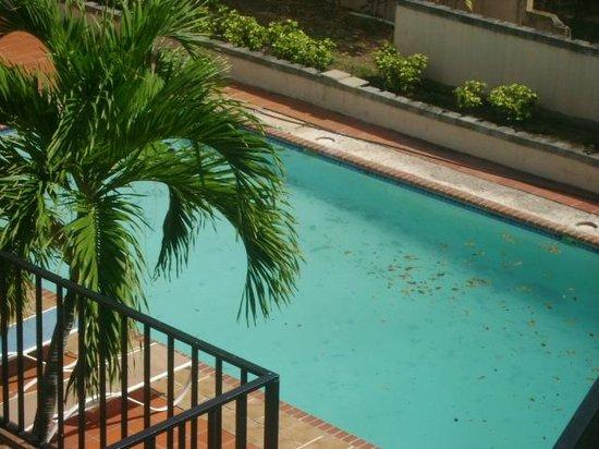 Hotel Villa Real :                   la piscina... llena de hojas y limo