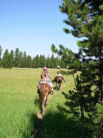 Wilderness Trails, Inc. Day Tours