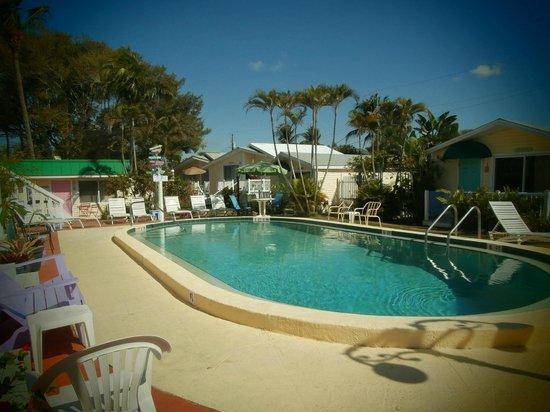 سيلفر ساندز فيلاز: The pool