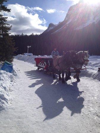 Fairmont Chateau Lake Louise:                   HORSE SLEDGE