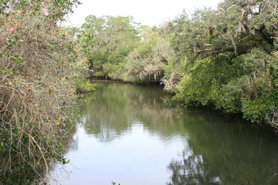 Koreshan State Historic Site:                   Estero River ~ Great for Kayaking or Canoeing