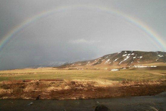 Laxnes Horse Farm:                   rainbow
