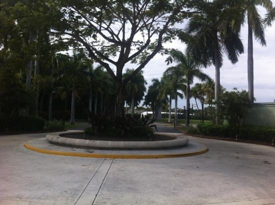 Crandon Park Tennis Center :                   ingresso