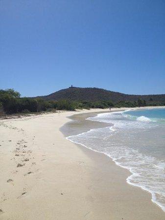 Culebrita Island : playa tortuga