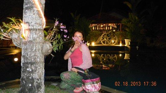 Hotel Flower Garden:                   красивый сад