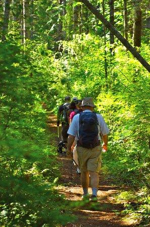 Ocean to Alpine Adventure Lodge: Daily Hike