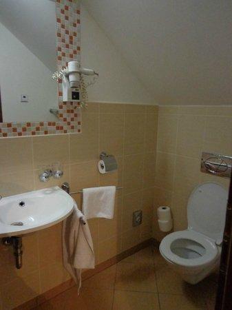 Hotel Residence Agnes:                   Baño