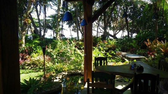 Hotel Banana Azul:                   From dining