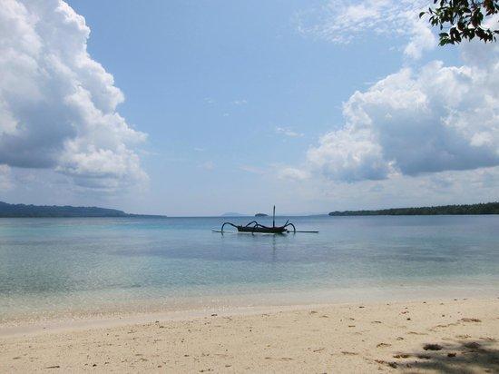 Ratua Private Island:                   beach
