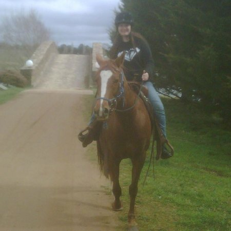 MONA Country Manor House: Ask about horseriding and equestrian opportunities
