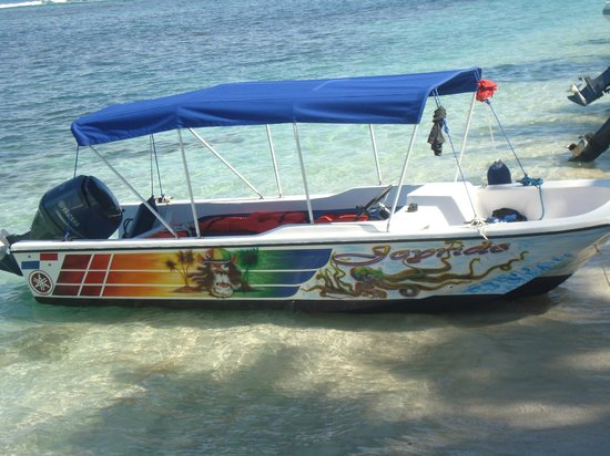 Hostal Mar e Iguana :                   Lancha que utilizan para los tours