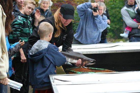 Quatse Salmon Stewardship Centre: River's Day fun!