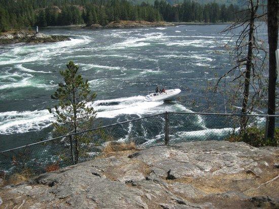 Skookumchuck Narrows Provincial Park: Dare devils!!