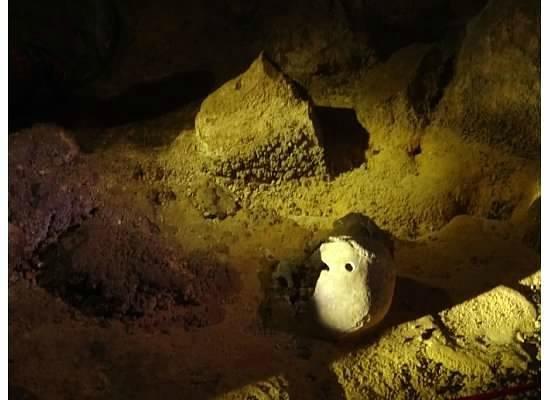 ATM Cave Tour :                   Mayan Human Remains
