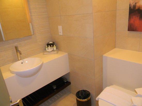 Park Avenue Rochester Hotel: Toilet pic 1