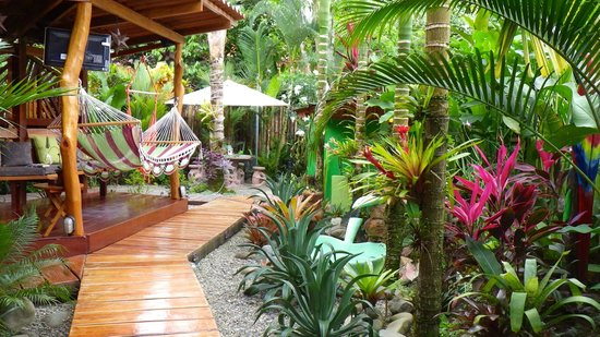 Physis Caribbean Bed & Breakfast:                   grounds