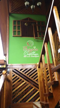 Physis Caribbean Bed & Breakfast:                   Stairs