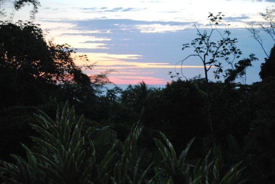 Finca Exotica Ecolodge:                   Sunset Hike at La Finca