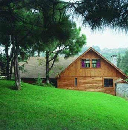 Hotel Sierra Paraiso : Cabaña vista desde áreas verdes