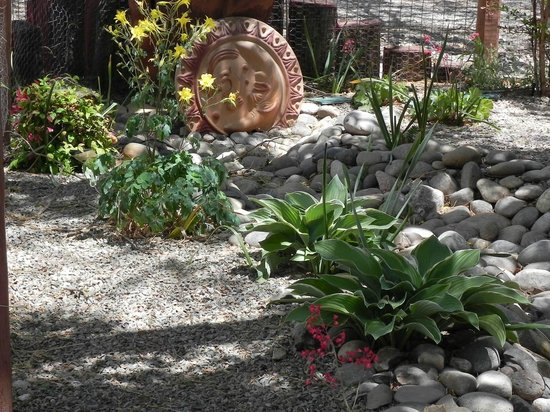 Chocolate Turtle Bed and Breakfast: Dry Riverbed garden with Xerix plants outside the Sandia Room