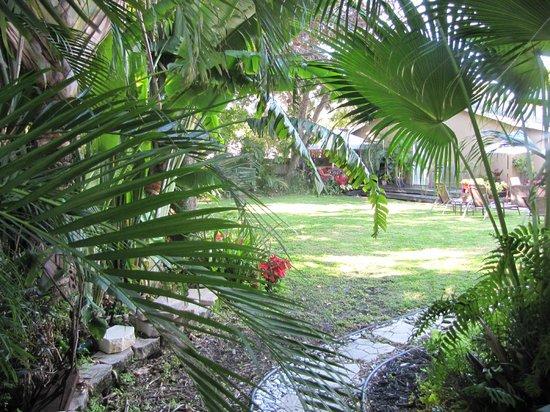 Ed Lugo Resort:                   Cours extérieure villa 2425