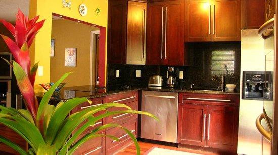 Ed Lugo Resort:                   Cuisine villa 2425