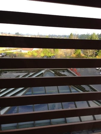 Holiday Inn Express Hotel & Suites Langley: Window View