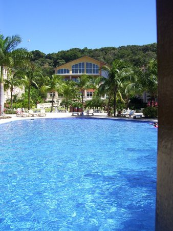 Infinity Bay Spa and Beach Resort: Piscne, réception et buffet