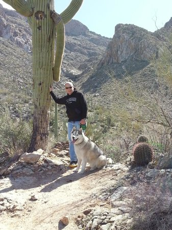 Hilton Tucson El Conquistador Golf & Tennis Resort:                   Resort Hike