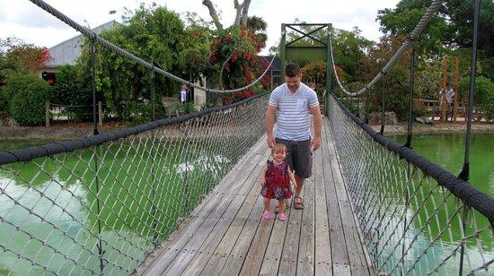 Butterfly World :                   Jardins extérieurs