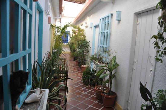 Posada Macondo:                   Corredor hacia las habitaciones