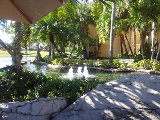 Bonaventure Resort & Spa:                   Garden