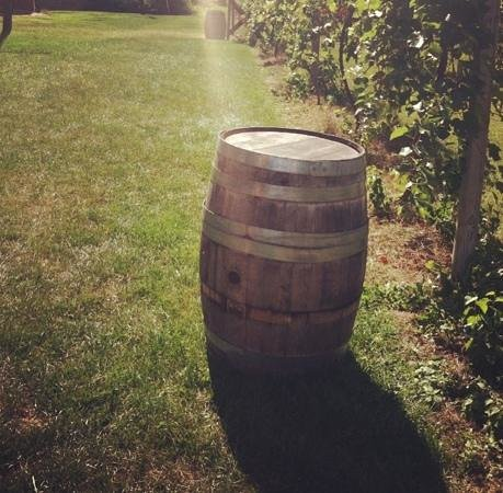Galena Cellars Winery & Vineyard:                   wine barrel
